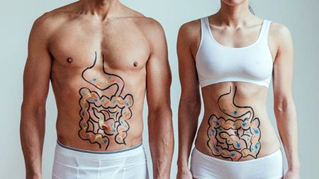 Cómo ayudan los probióticos al sistema inmunológico