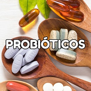 ¿Qué son los probióticos?